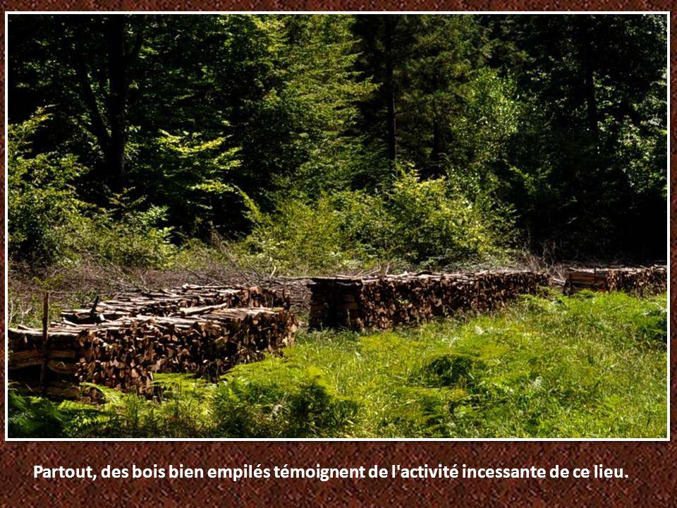 Partout, des bois bien empilés témoignent de l activité incessante de ce lieu.