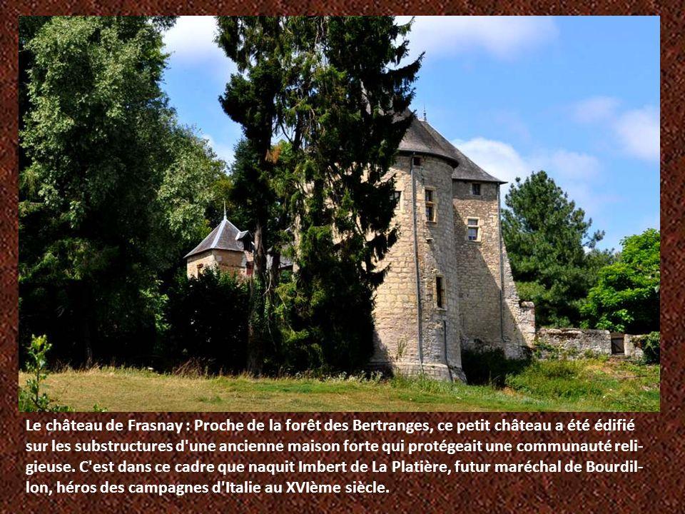 Le château de Frasnay : Proche de la forêt des Bertranges, ce petit château a été édifié sur les substructures d une ancienne maison forte qui protégeait une communauté reli-gieuse.