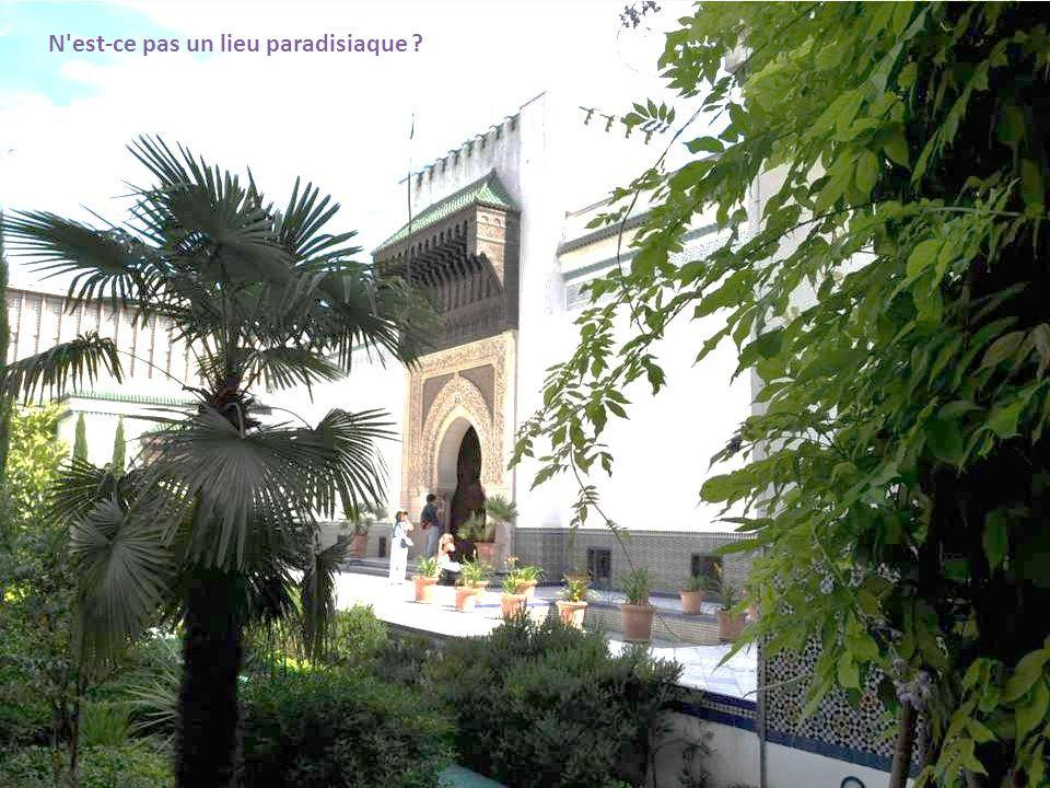 N est-ce pas un lieu paradisiaque