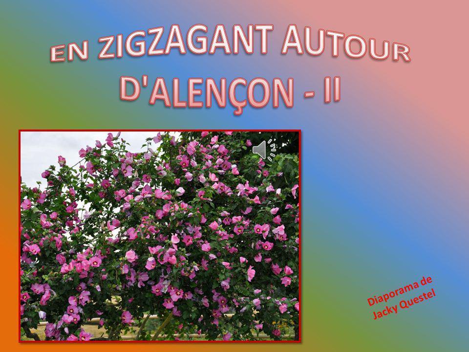 EN ZIGZAGANT AUTOUR D ALENÇON - II