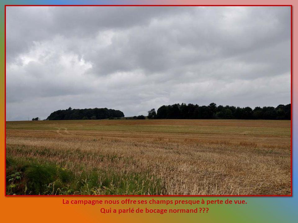 La campagne nous offre ses champs presque à perte de vue.