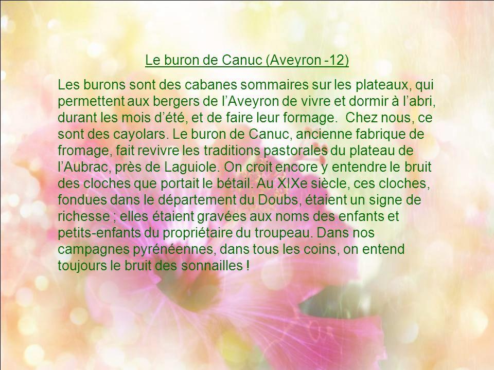 Le buron de Canuc (Aveyron -12)