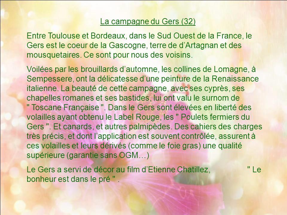 La campagne du Gers (32)
