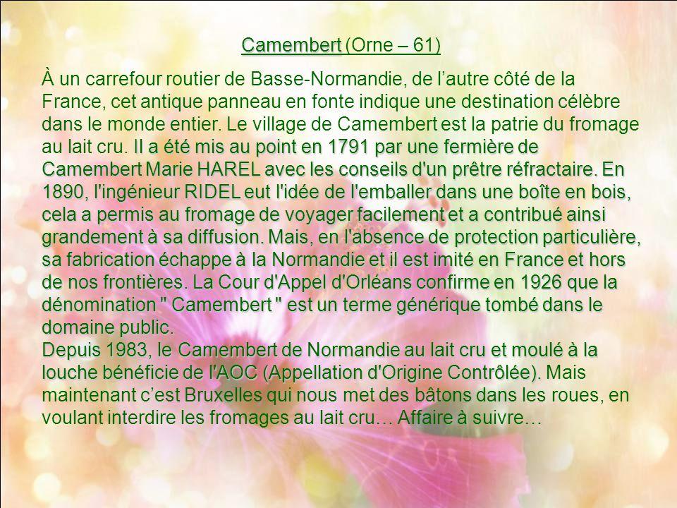 Camembert (Orne – 61)