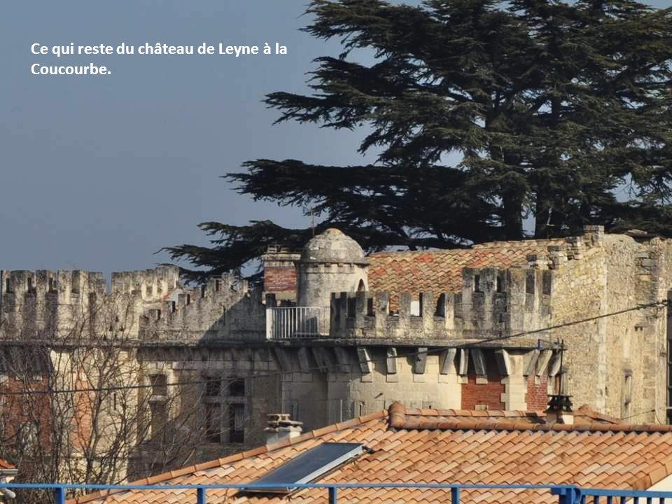 Ce qui reste du château de Leyne à la