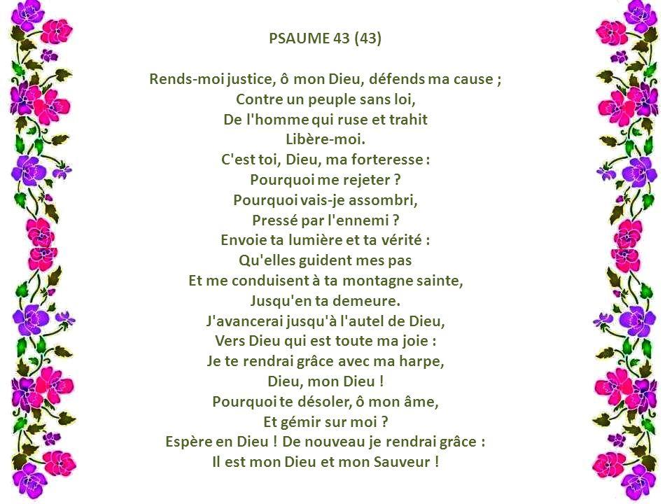 Rends-moi justice, ô mon Dieu, défends ma cause ;
