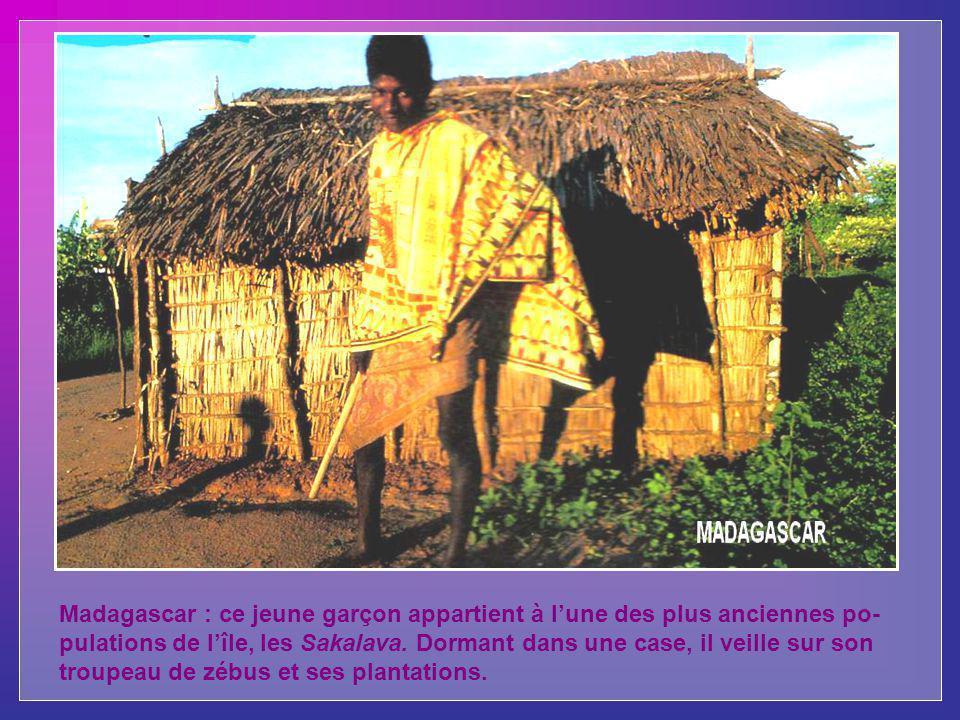 Madagascar : ce jeune garçon appartient à l'une des plus anciennes po-pulations de l'île, les Sakalava.