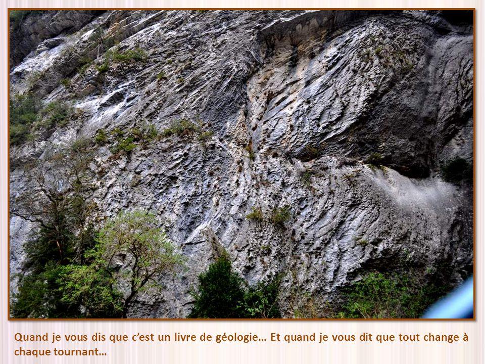 Quand je vous dis que c'est un livre de géologie… Et quand je vous dit que tout change à chaque tournant…