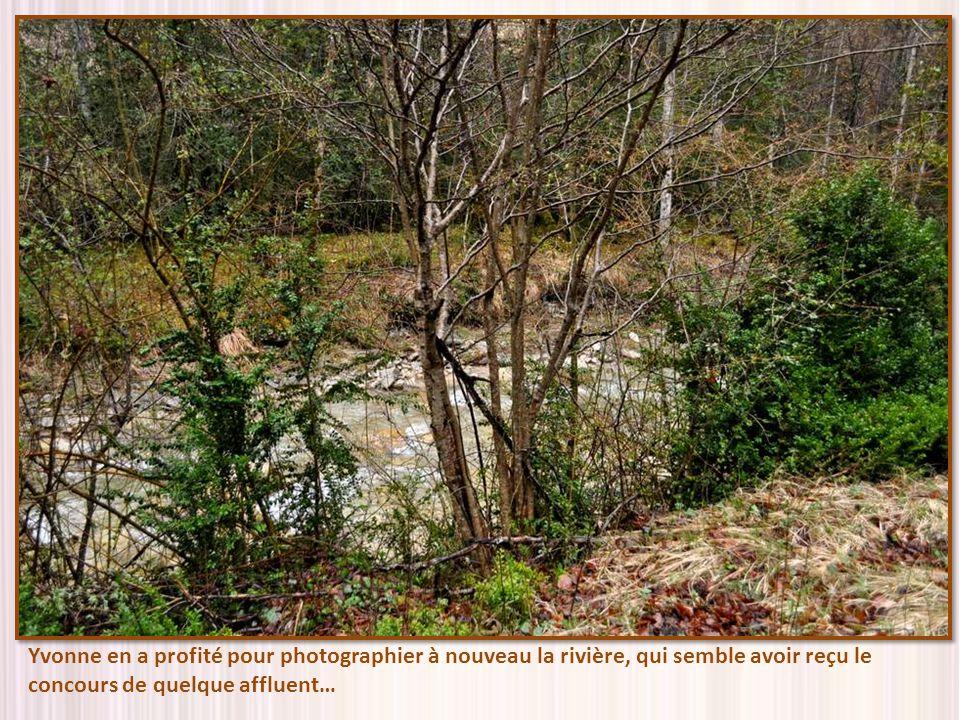 Yvonne en a profité pour photographier à nouveau la rivière, qui semble avoir reçu le concours de quelque affluent…