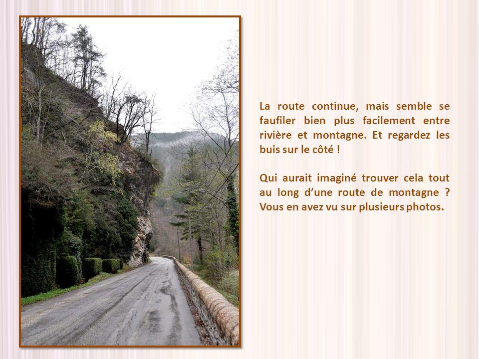 La route continue, mais semble se faufiler bien plus facilement entre rivière et montagne. Et regardez les buis sur le côté !
