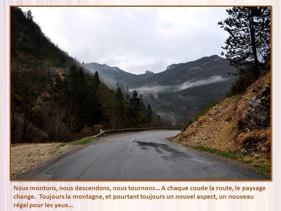 Nous montons, nous descendons, nous tournons… A chaque coude la route, le paysage change.