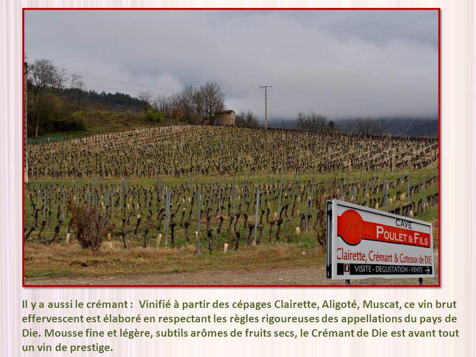 Il y a aussi le crémant : Vinifié à partir des cépages Clairette, Aligoté, Muscat, ce vin brut effervescent est élaboré en respectant les règles rigoureuses des appellations du pays de Die.