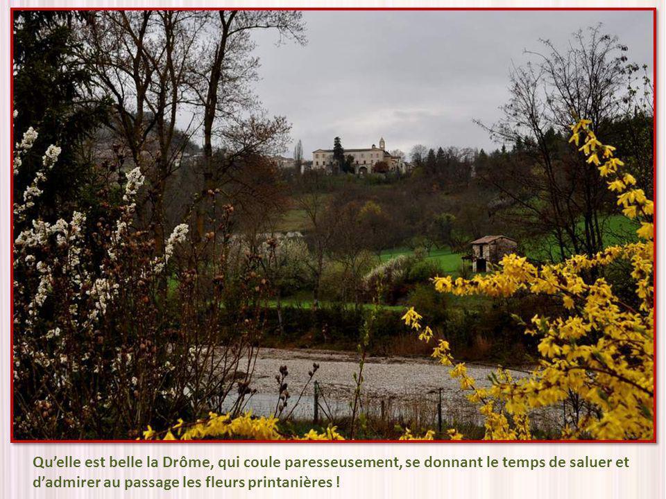 Qu'elle est belle la Drôme, qui coule paresseusement, se donnant le temps de saluer et d'admirer au passage les fleurs printanières !