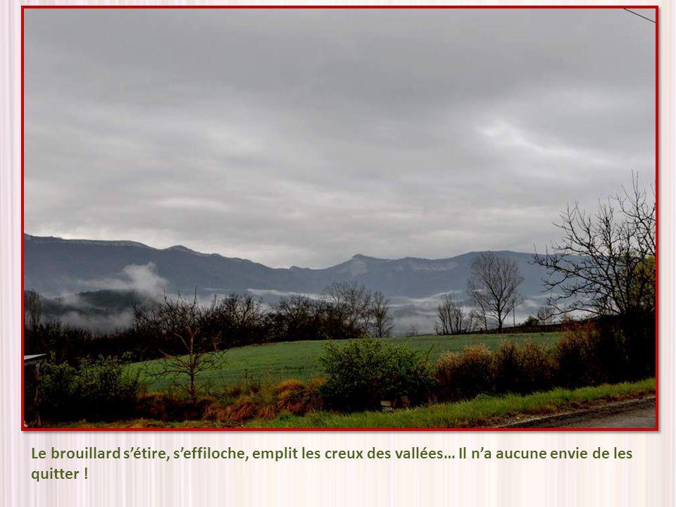 Le brouillard s'étire, s'effiloche, emplit les creux des vallées… Il n'a aucune envie de les quitter !