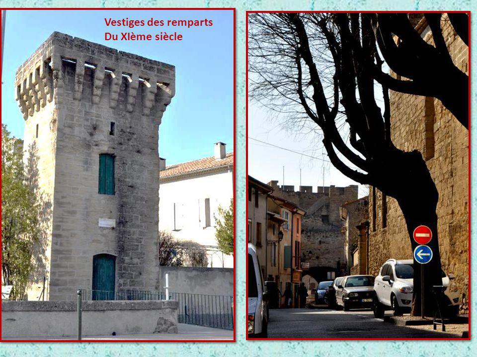 Vestiges des remparts Du XIème siècle
