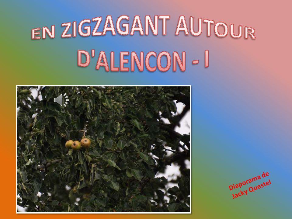 EN ZIGZAGANT AUTOUR D ALENCON - I