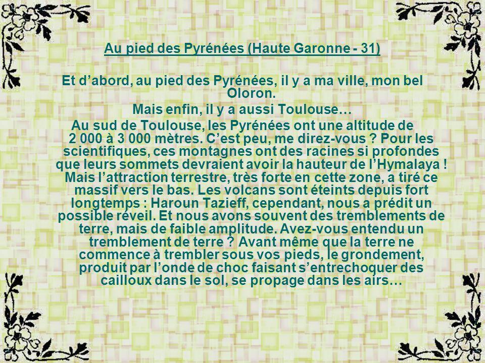 Au pied des Pyrénées (Haute Garonne - 31)