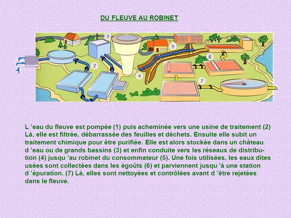 DU FLEUVE AU ROBINET L 'eau du fleuve est pompée (1) puis acheminée vers une usine de traitement (2)