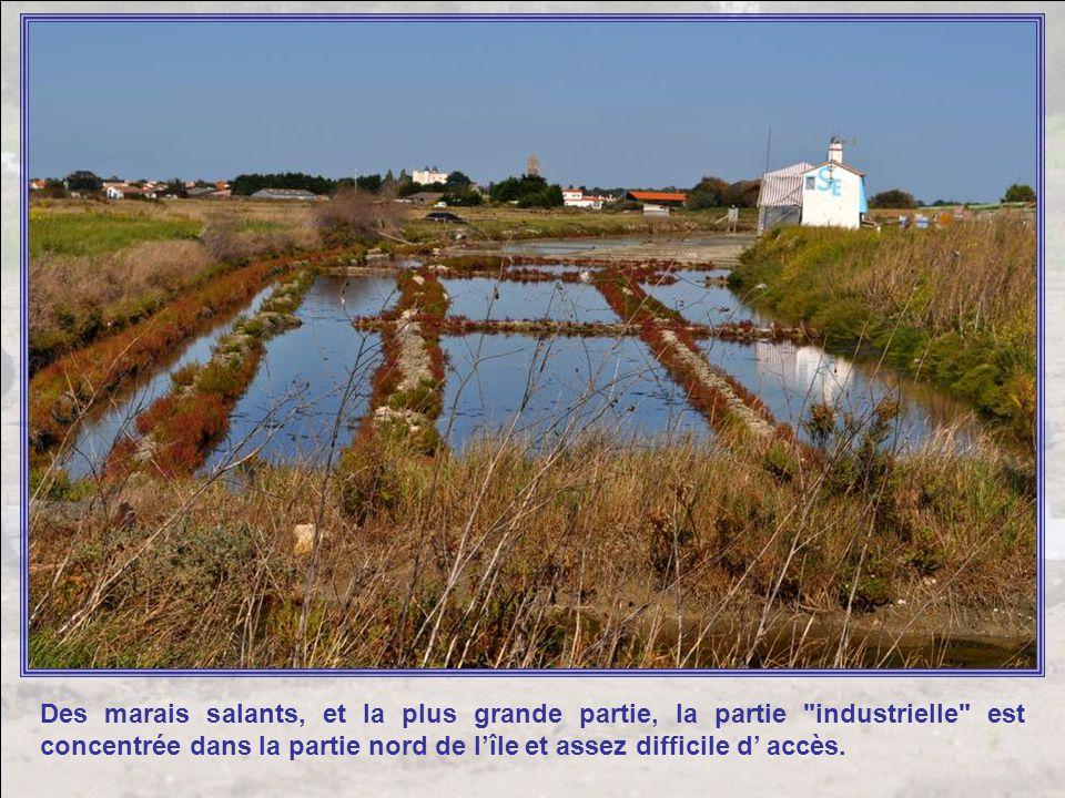 Des marais salants, et la plus grande partie, la partie industrielle est concentrée dans la partie nord de l'île et assez difficile d' accès.