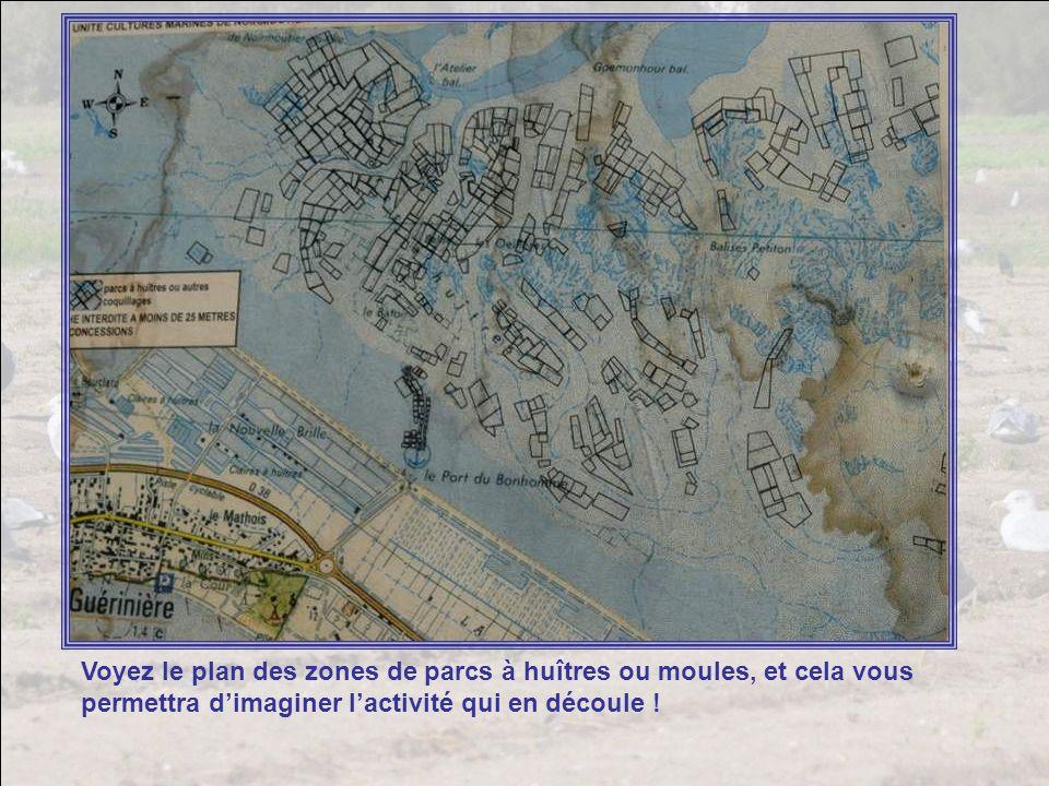 Voyez le plan des zones de parcs à huîtres ou moules, et cela vous permettra d'imaginer l'activité qui en découle !