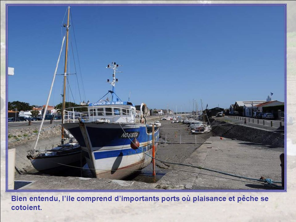 Bien entendu, l'ile comprend d'importants ports où plaisance et pêche se cotoient.