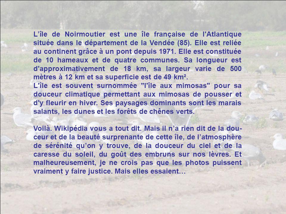 L'île de Noirmoutier est une île française de l Atlantique située dans le département de la Vendée (85). Elle est reliée au continent grâce à un pont depuis 1971. Elle est constituée de 10 hameaux et de quatre communes. Sa longueur est d approximativement de 18 km, sa largeur varie de 500 mètres à 12 km et sa superficie est de 49 km².
