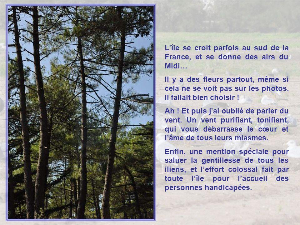 L'île se croit parfois au sud de la France, et se donne des airs du Midi…