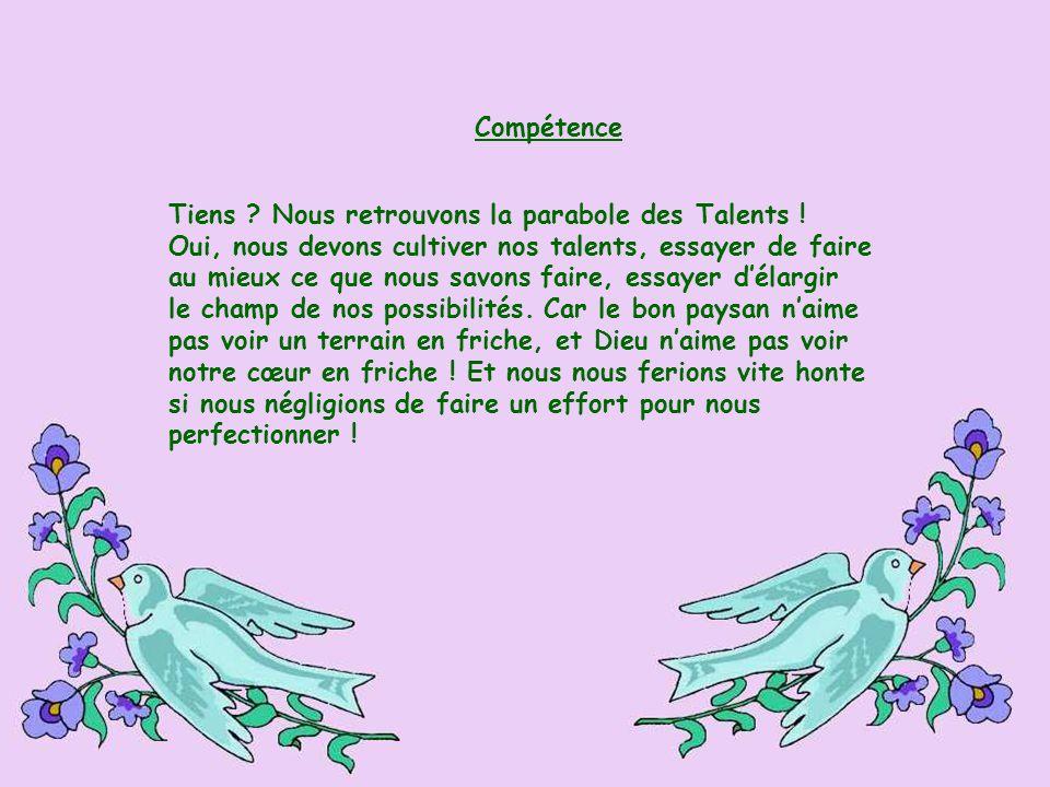 Compétence Tiens Nous retrouvons la parabole des Talents ! Oui, nous devons cultiver nos talents, essayer de faire.
