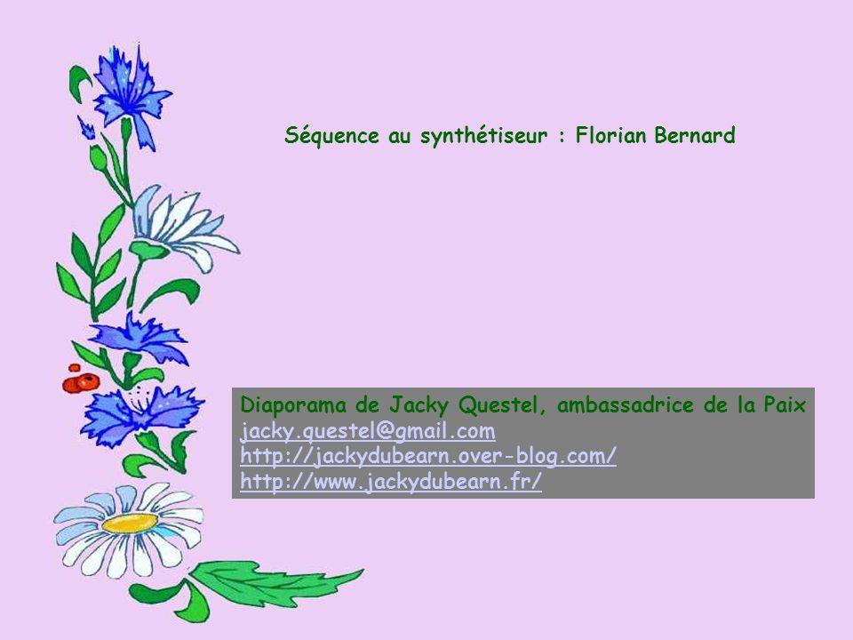 Séquence au synthétiseur : Florian Bernard