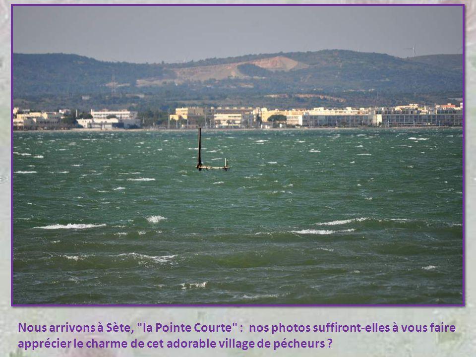Nous arrivons à Sète, la Pointe Courte : nos photos suffiront-elles à vous faire apprécier le charme de cet adorable village de pécheurs