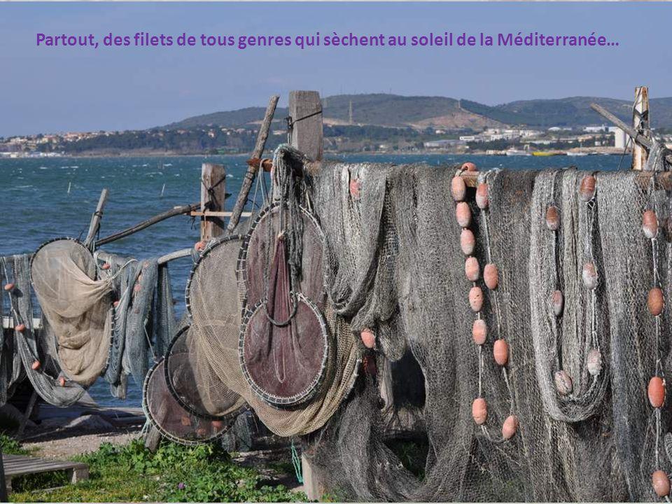 Partout, des filets de tous genres qui sèchent au soleil de la Méditerranée…