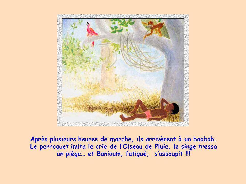 Après plusieurs heures de marche, ils arrivèrent à un baobab.