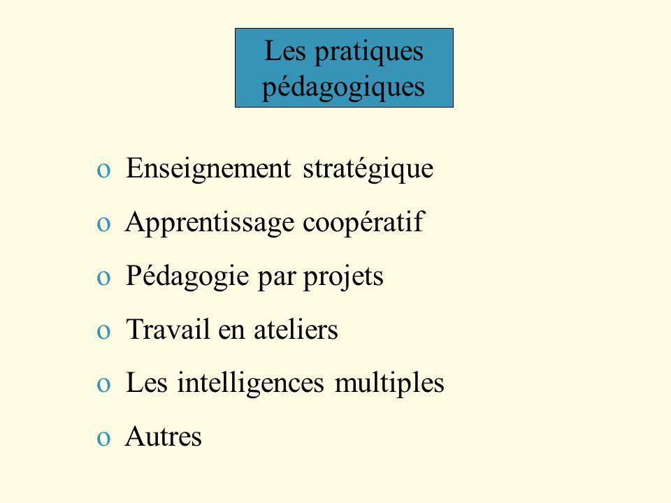 Les pratiques pédagogiques