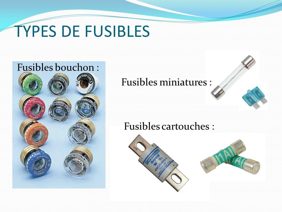 TYPES DE FUSIBLES Fusibles bouchon : Fusibles miniatures :