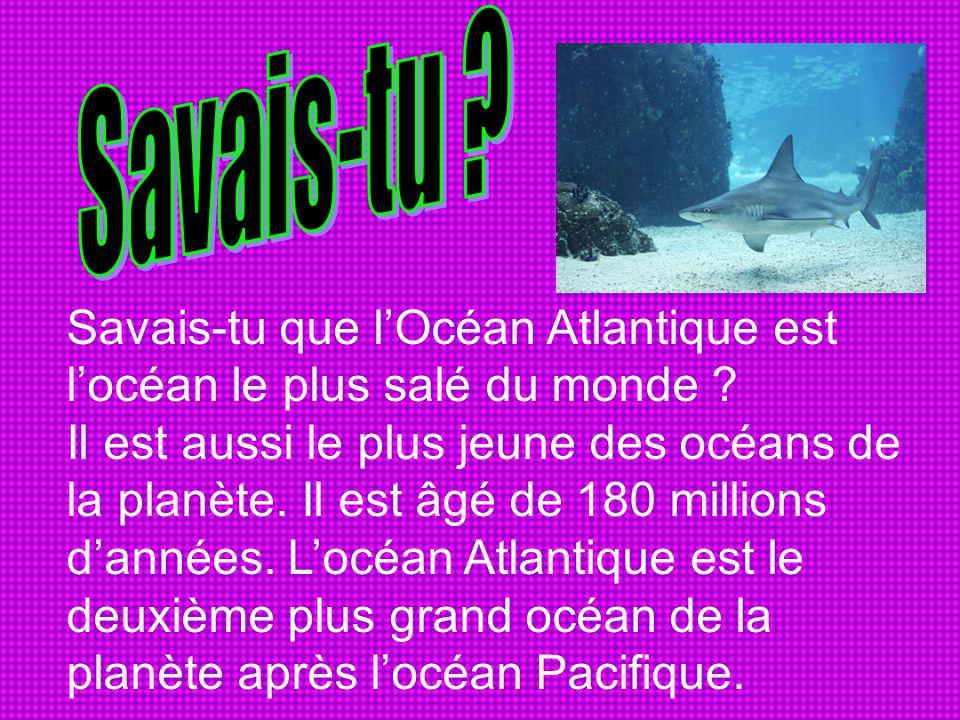 Savais-tu que l'Océan Atlantique est l'océan le plus salé du monde