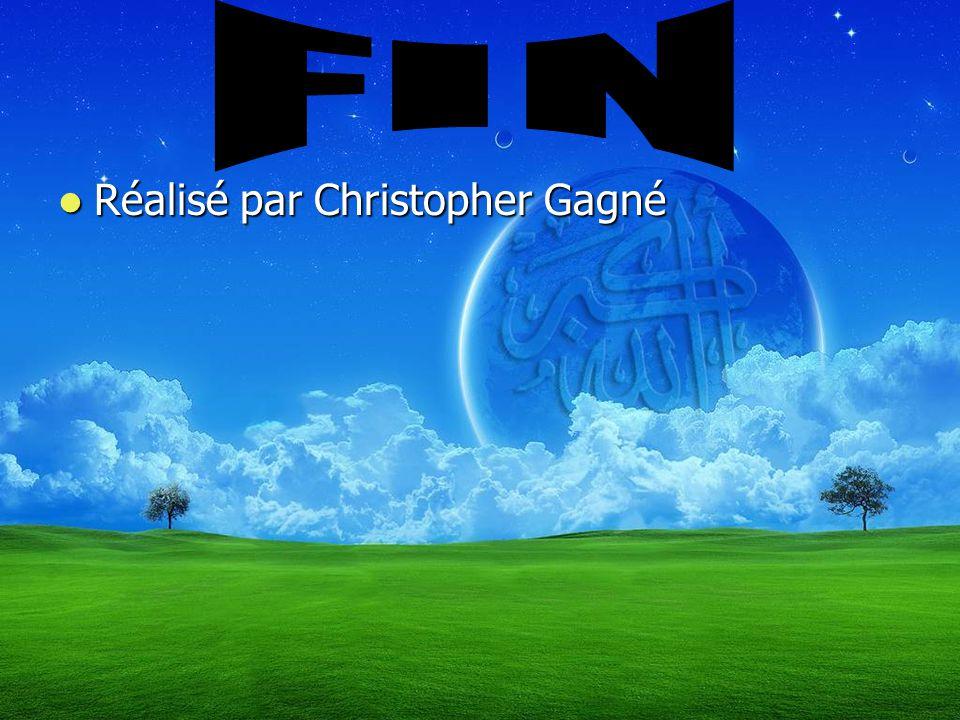 FIN Réalisé par Christopher Gagné