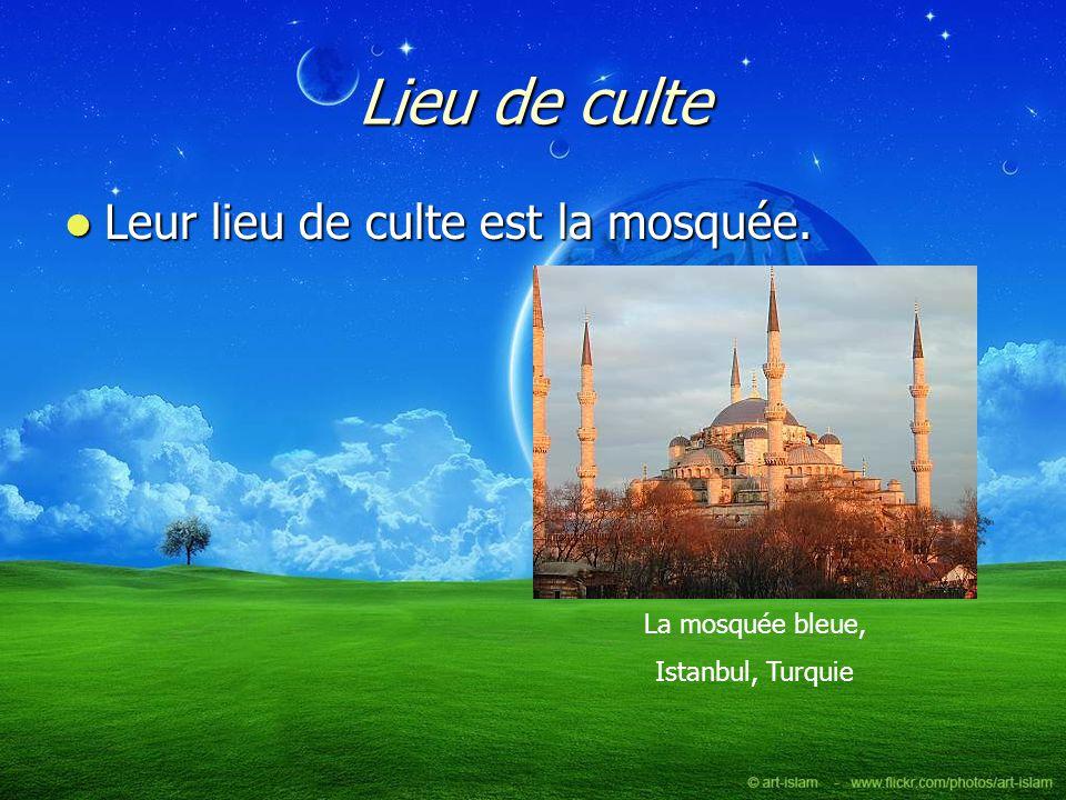 Lieu de culte Leur lieu de culte est la mosquée. La mosquée bleue,
