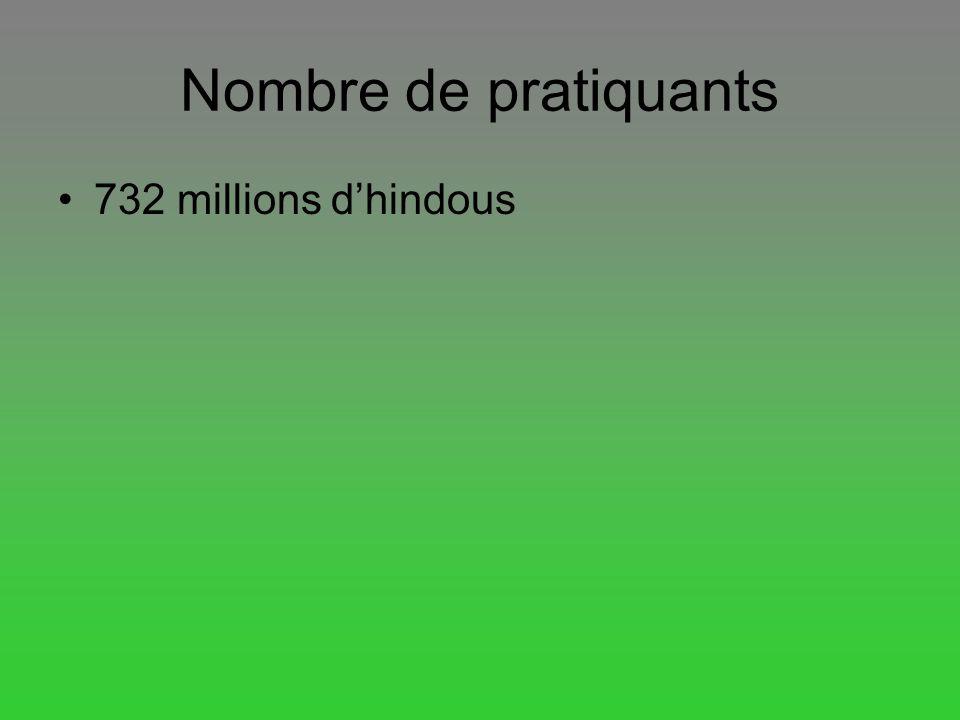 Nombre de pratiquants 732 millions d'hindous
