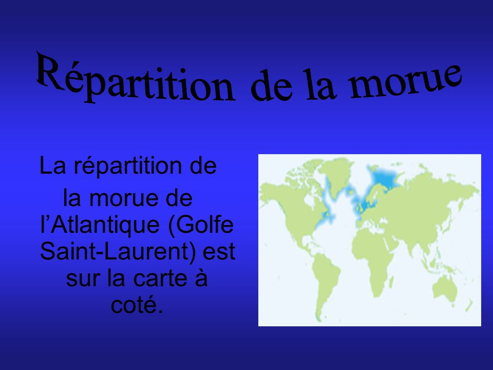 Répartition de la morue