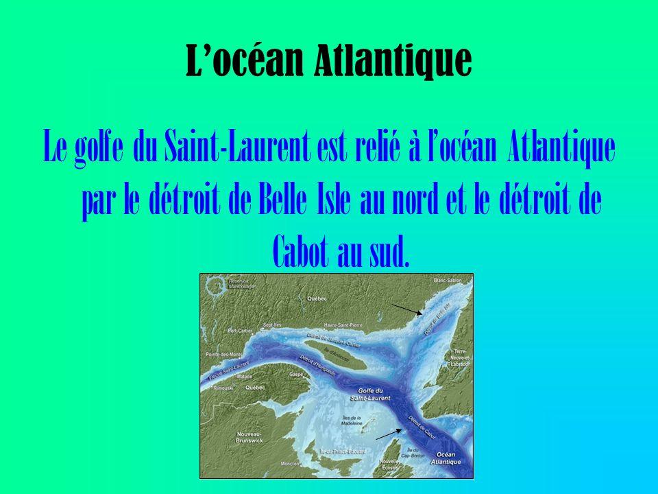 L'océan Atlantique Le golfe du Saint-Laurent est relié à l'océan Atlantique par le détroit de Belle Isle au nord et le détroit de Cabot au sud.