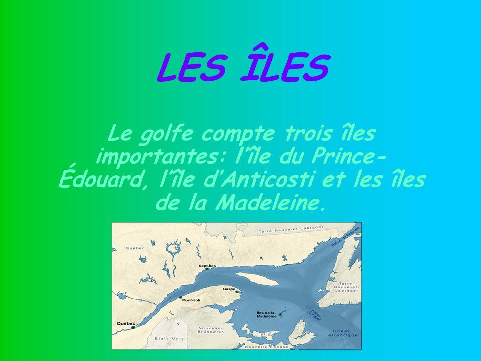 LES ÎLES Le golfe compte trois îles importantes: l'île du Prince-Édouard, l'île d'Anticosti et les îles de la Madeleine.