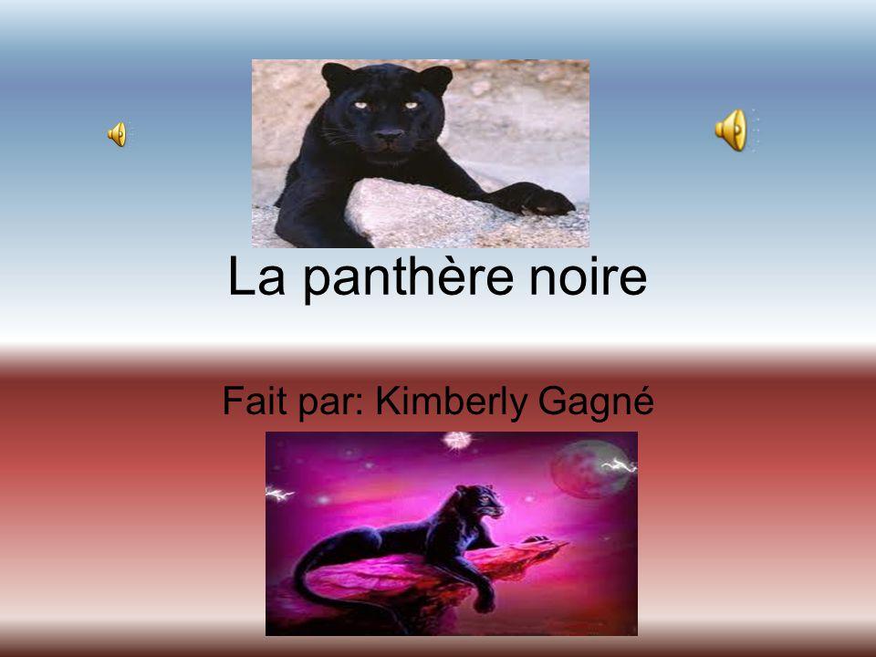 Fait par: Kimberly Gagné