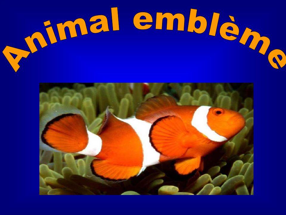 Animal emblème