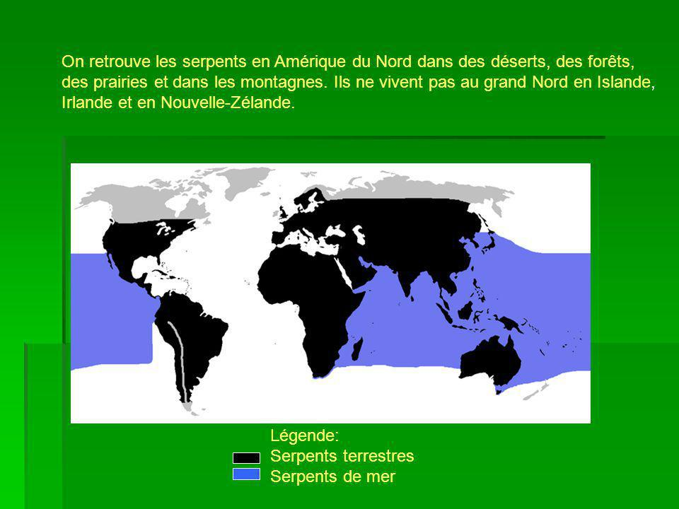 On retrouve les serpents en Amérique du Nord dans des déserts, des forêts,