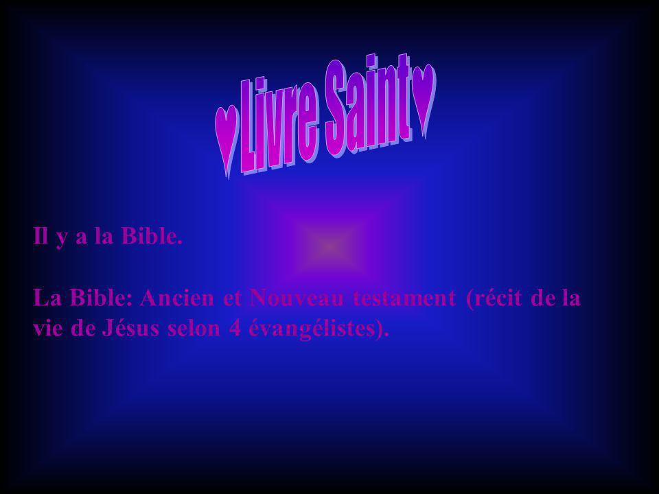 ♥Livre Saint♥ Il y a la Bible.