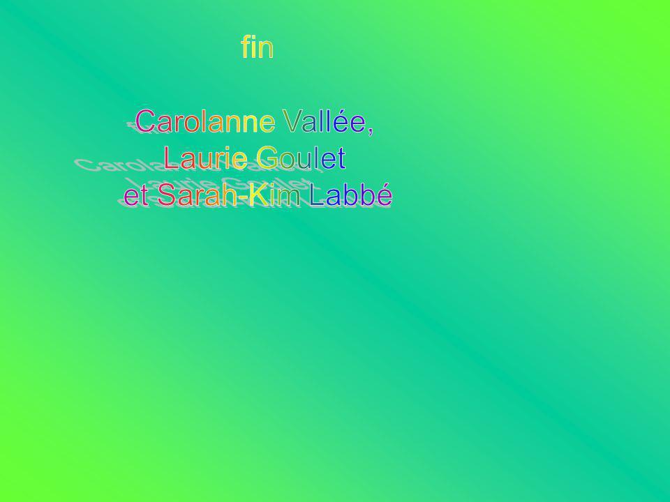 fin Carolanne Vallée, Laurie Goulet et Sarah-Kim Labbé