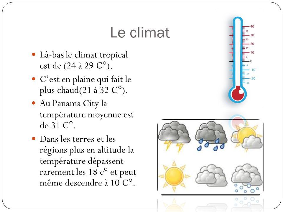 Le climat Là-bas le climat tropical est de (24 à 29 C°).