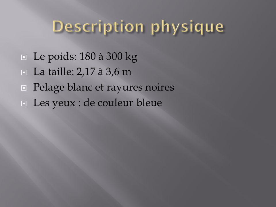 Description physique Le poids: 180 à 300 kg La taille: 2,17 à 3,6 m