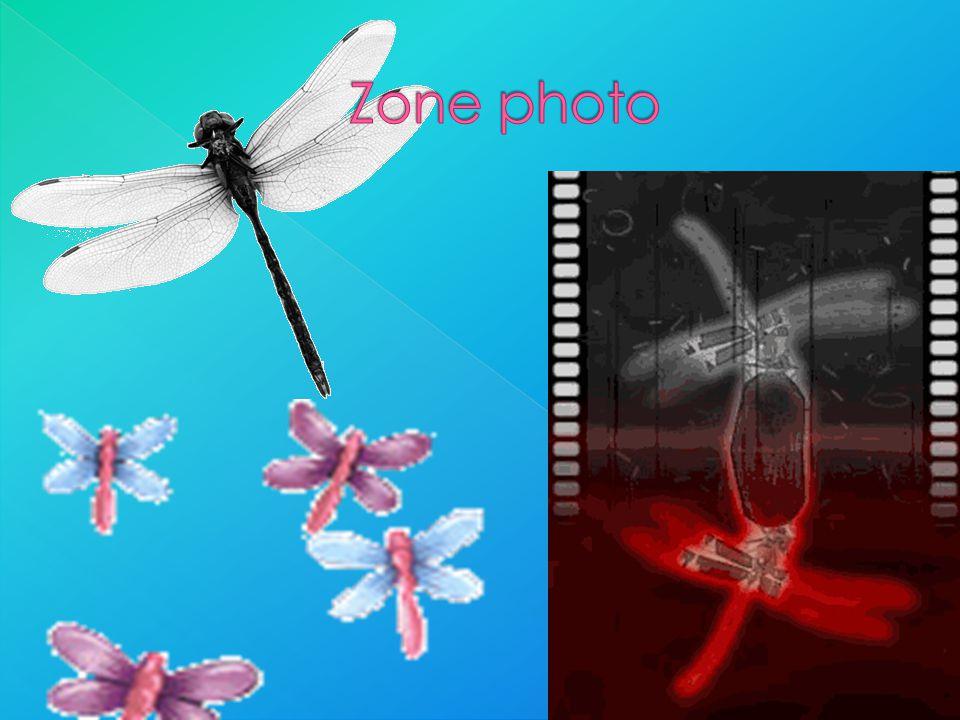 Zone photo