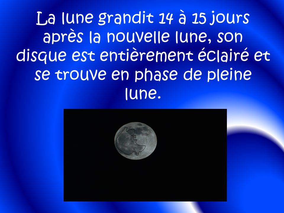 La lune grandit 14 à 15 jours après la nouvelle lune, son disque est entièrement éclairé et se trouve en phase de pleine lune.